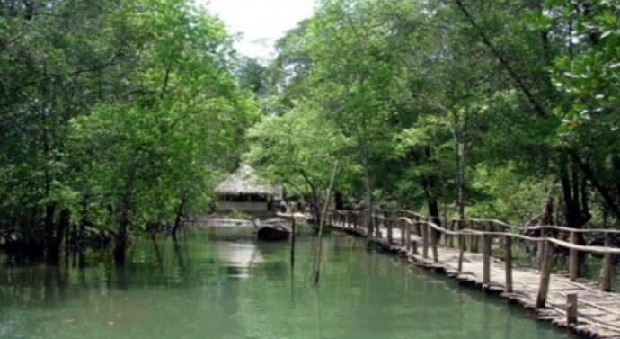Bhitarakanika National Park - Odisha