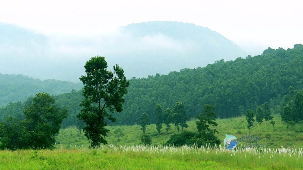 Similipal national park image