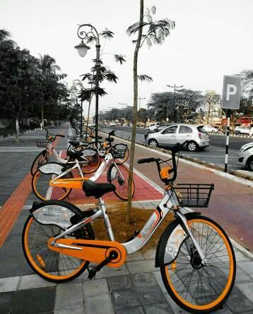 Yana- Mo Cycle on stand