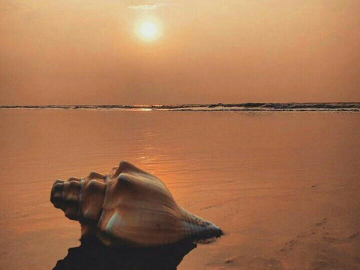 Golden Beach Of Puri